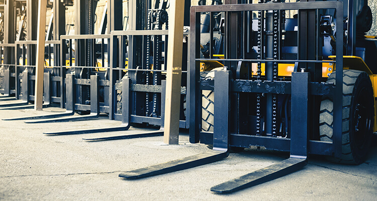 fleet of forklifts lined up