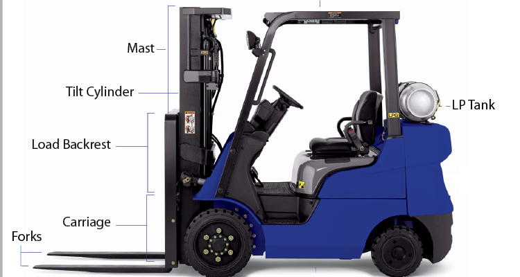 Generic Forklift diagram of anatomy
