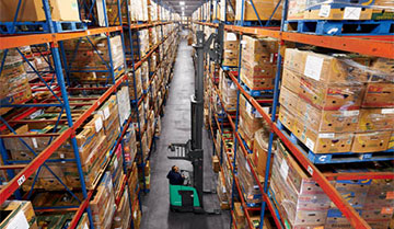 Worker reaching highest warehouse shelf with Mitsubishi pantograph reach truck